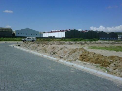 kwela premises